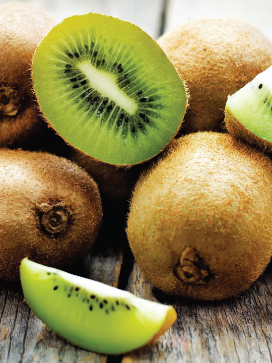 Kiwi Frozen Yogurt Frozen Yogurt Flavor with Tart base powder mix