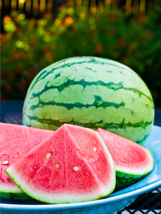 Watermelon Frozen Yogurt Frozen Yogurt Flavor with Tart base powder ...