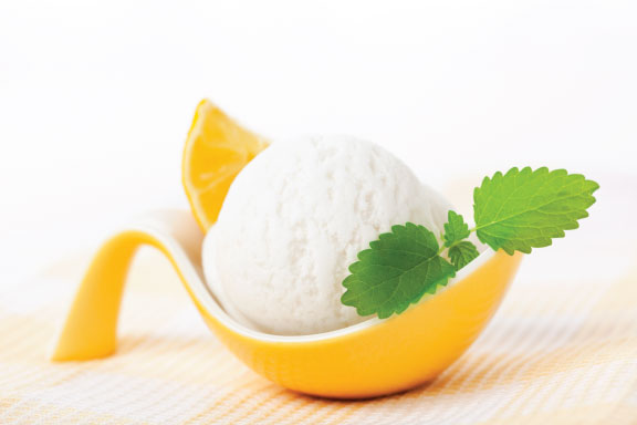 Sorbet Frozen Yogurt Powder