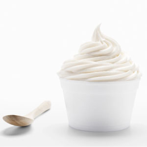 Euro Tart Frozen Yogurt Powder